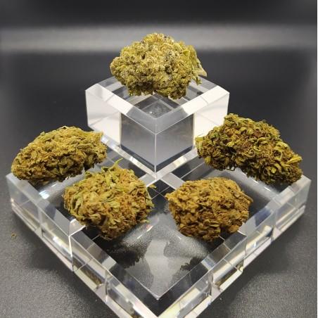 la tribu saphir cbd cristal flowers
