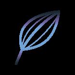FLEURS de CBD Cristal Flowers